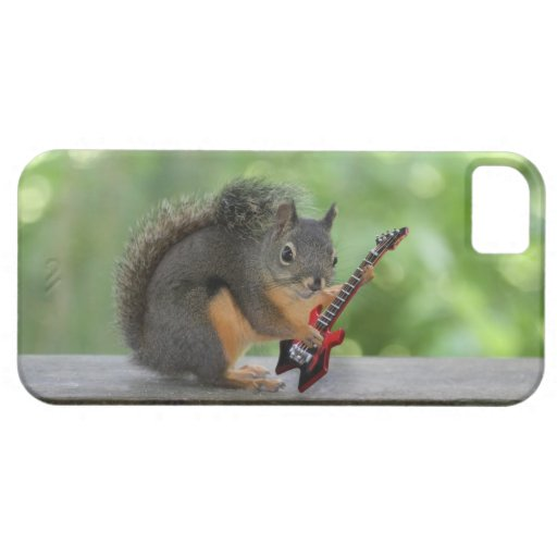 Squirrel Playing Electric Guitar iPhone 5 Cover | Zazzle