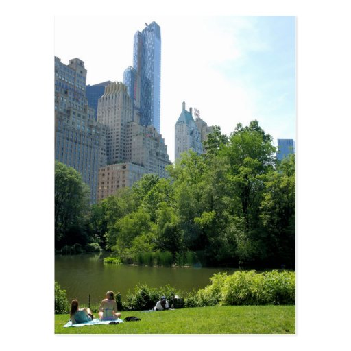 Central Park New York: Summer In Central Park ... New York City Postcard