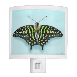 Green and Black Butterfly on Sky Blue Night Light