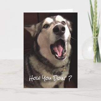 Funny Thinking Of You Alaskan Malamute Dog Photo Card