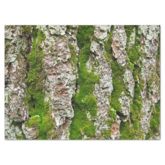 "Pine Tree Bark With Moss Tissue Paper 17"" X 23"" Tissue Paper"
