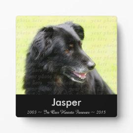 In Memory Of .. Dog Photo Memorial Plaque