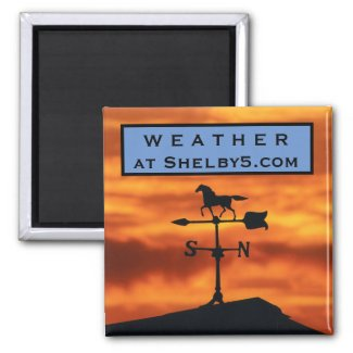 Weather Vane at Sunset Magnet