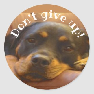 Don't Give Up Rottweiler Classic Round Sticker