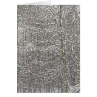 Snow Falling Card