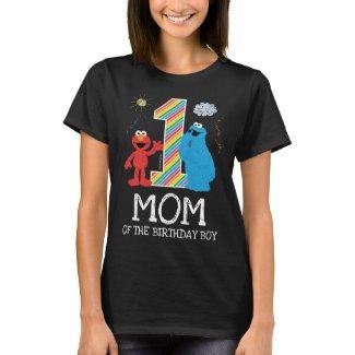 Sesame Street Rainbow 1st Birthday | Dad T-Shirt