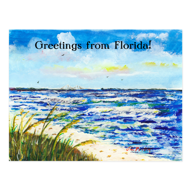 Tampa Bay Florida Beach Sunshine Skyway Bridge Post Cards