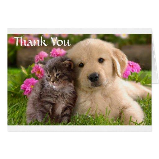 Cute Corgi Note Cards   Zazzle  Thank You Cute Corgi Puppy
