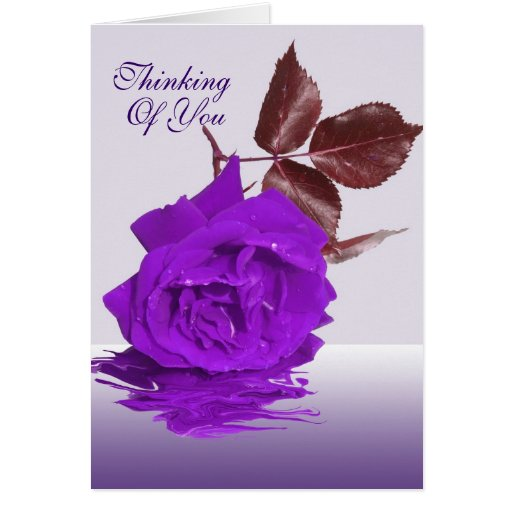 The Purple Rose Thinking of you Card | Zazzle