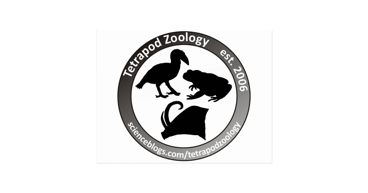 THE TETRAPOD ZOOLOGY LOGO POSTCARD | Zazzle