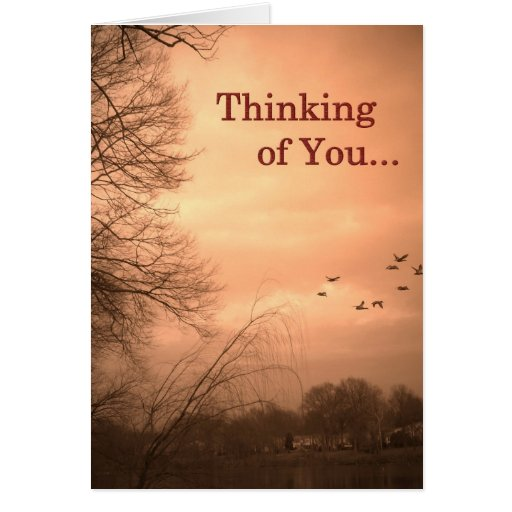 Thinking of You - Blank Inside Greeting Card | Zazzle