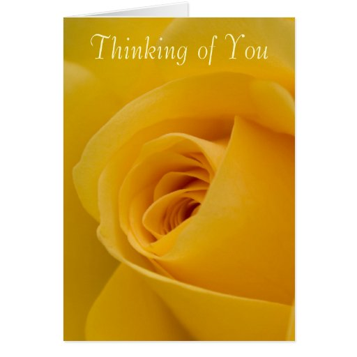 Thinking of you Card - Yellow Rose Flower | Zazzle