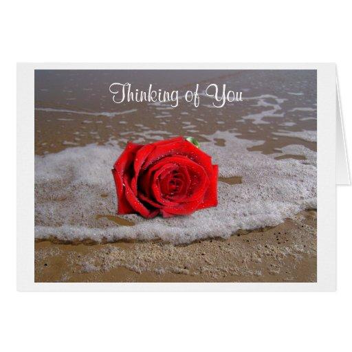 Thinking of You Red Rose On Beach Greeting Card | Zazzle