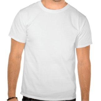 Two Cute Cartoon Ponies T-shirt shirt