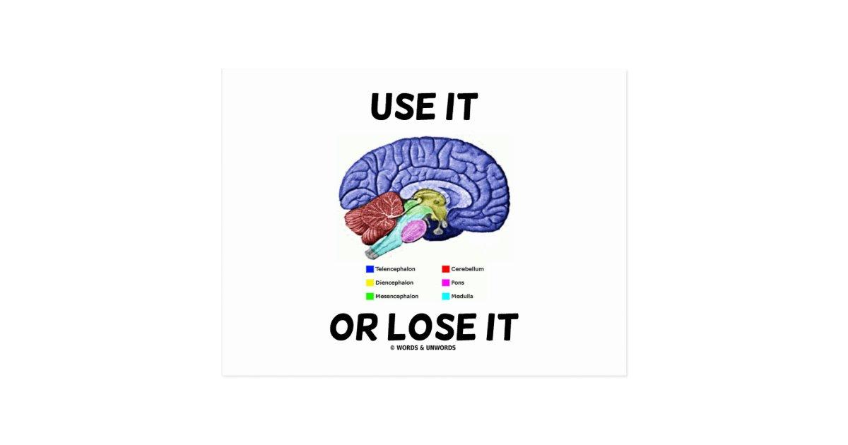 Use It Or Lose It (Brain Anatomy Humor Saying) Postcard
