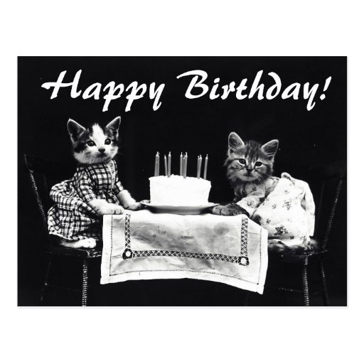 vintage birthday cats cat - photo #24