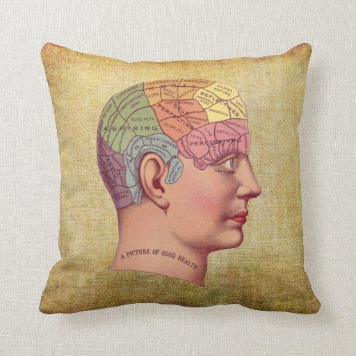 Vintage Medical Brain Anatomy Pillow Zazzle
