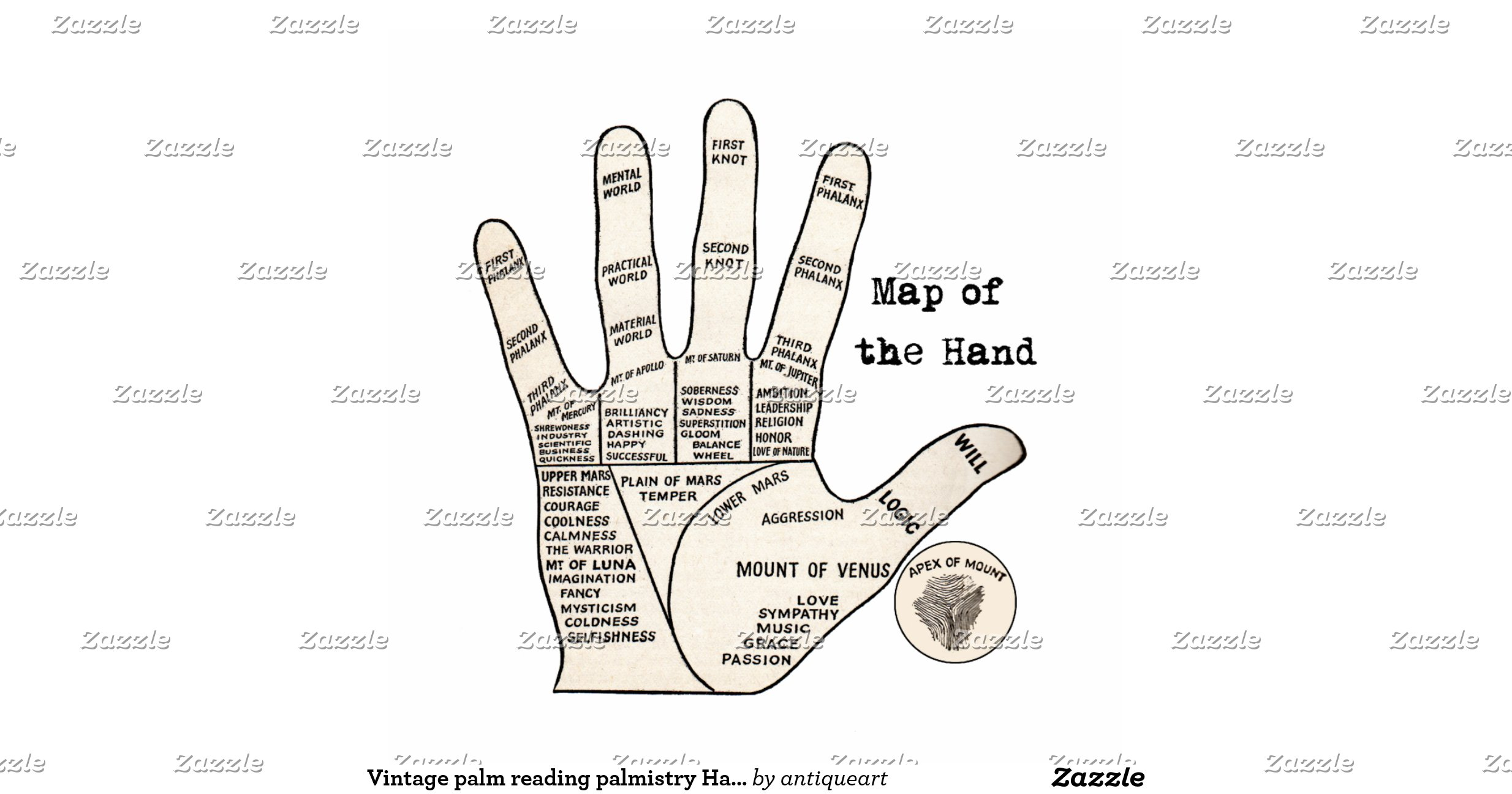 Vintage Palm Reading Palmistry Hand Map Standing Photo