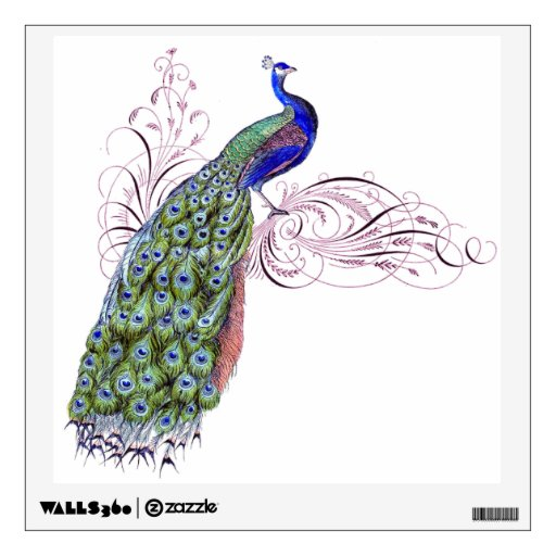 Vintage Peacock Wall Stickers Zazzle
