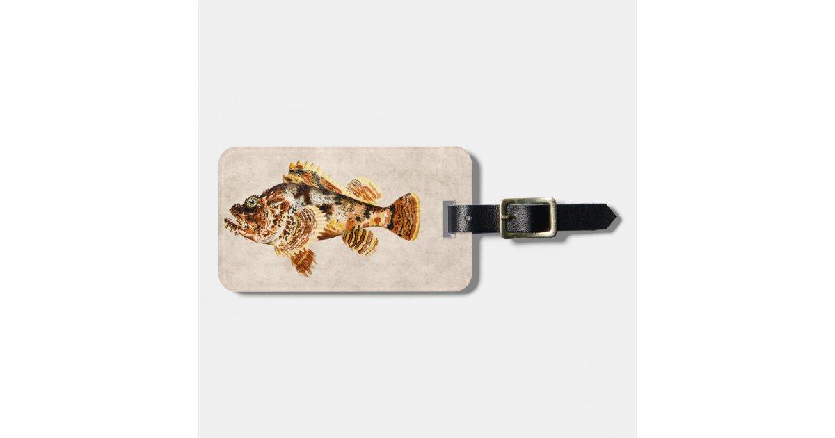 Hawaiian Tag: Vintage Scorpion Fish Antique Hawaiian Drawing Luggage Tag