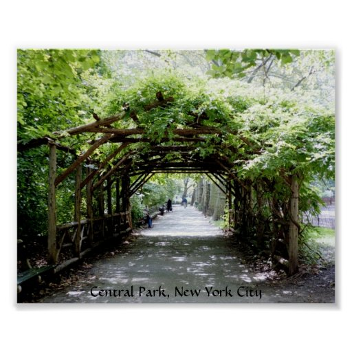 Arbor Park: Walkway Arbor In Central Park, NYC Poster