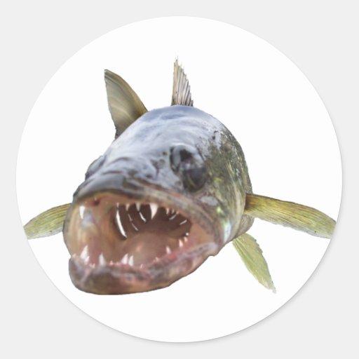 Walleye Face 8 Stickers
