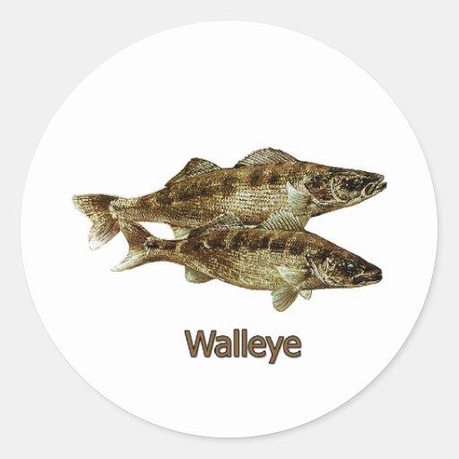 Walleye Fishing Logo Classic Round Sticker | Zazzle