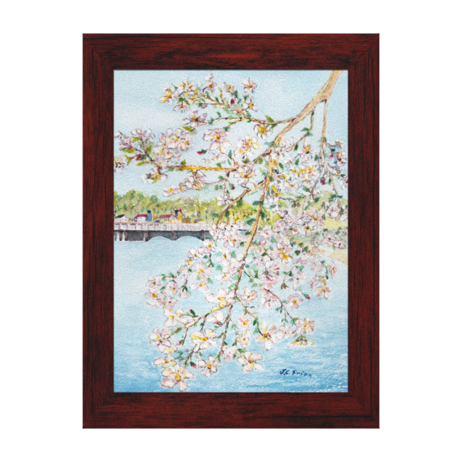 Washington DC Cherry Blossoms Watercolor Painting Gallery Wrapped Canvas