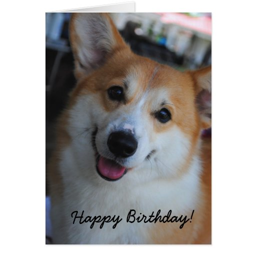 Welsh Corgi Happy Birthday Card