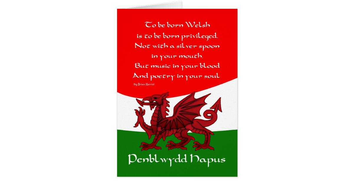 Welsh Dragon Birthday Card Poem By Brian Harris Zazzle