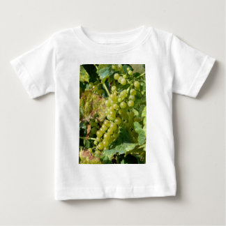 Vineyard Vines Baby Clothes Amp Apparel Zazzle