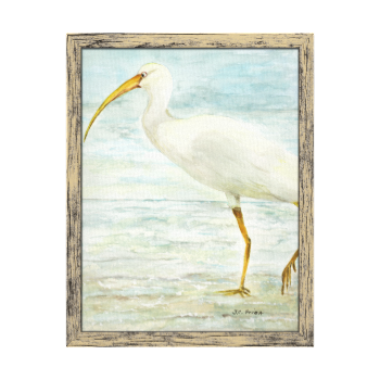 White Ibis on the Shore Beach Watercolor Painting Stretched Canvas Prints