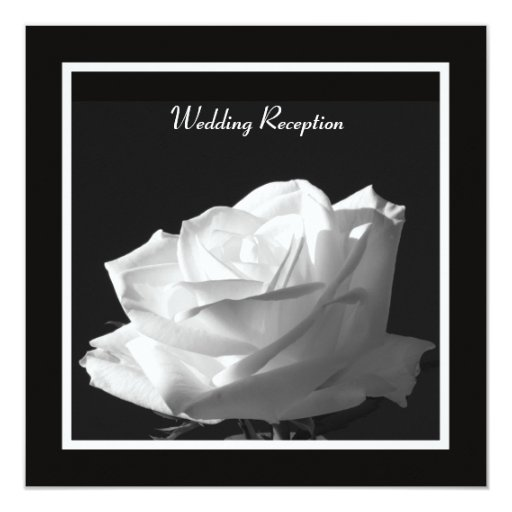 Wedding Reception Only Invitations: White Rose Wedding Reception Only Invitation