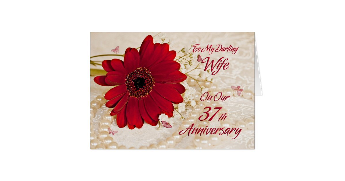 37th Wedding Anniversary Gifts: Wife On 37th Wedding Anniversary, A Daisy Flower Greeting