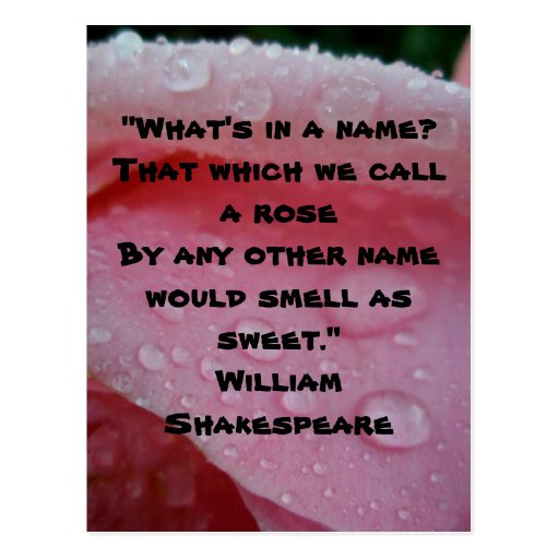 Shakespeare What Is In A Name Quote: Shakespeare Quotes About Roses. QuotesGram