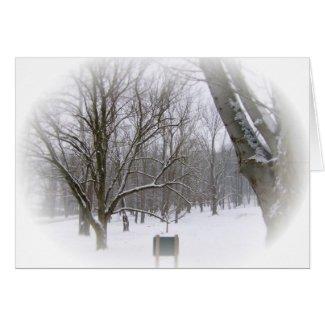 Winter Sleep card