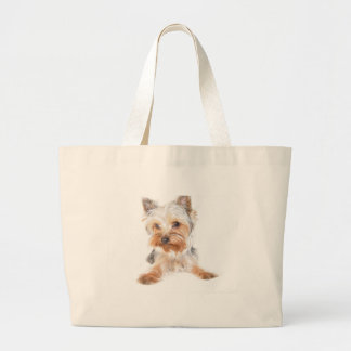Teacup Yorkie Clothing Accessories, Teacup Yorkie Fashion ...