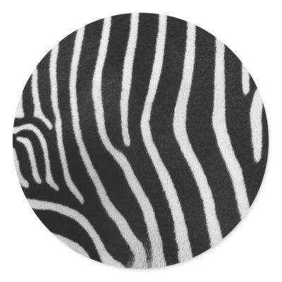 Knit Zebra Stripe Pattern | 1000 Free Patterns